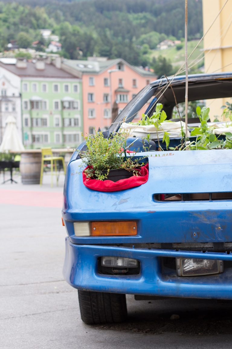 Bepflanzte Oldtimer in Innsbruck