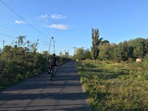 Fahrradweg im Grünen Mitten in Berlin