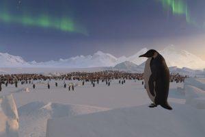 Pinguin auf einem Eisberg