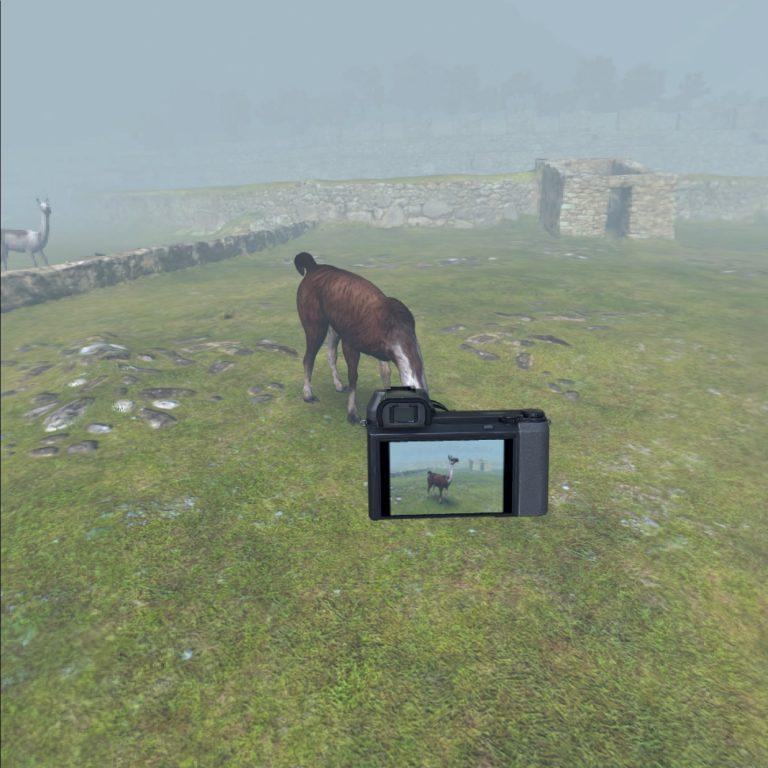 Kamera und virtuelles Lama
