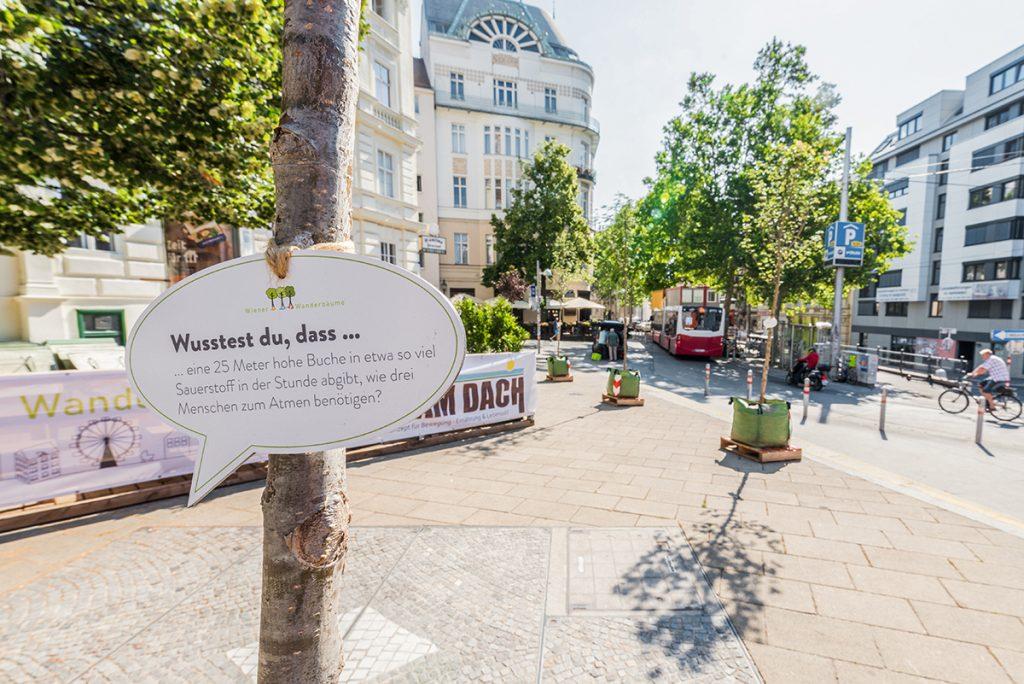 Mobile Wanderbäume in Wien
